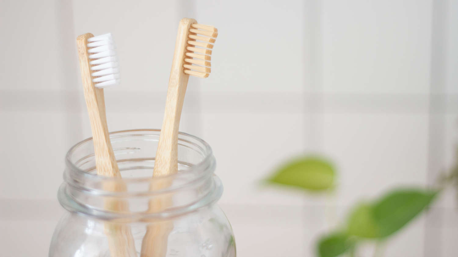 best eco friendly toothbrush