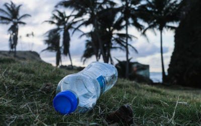 Why Are Plastic Water Bottles Bad for the Environment?