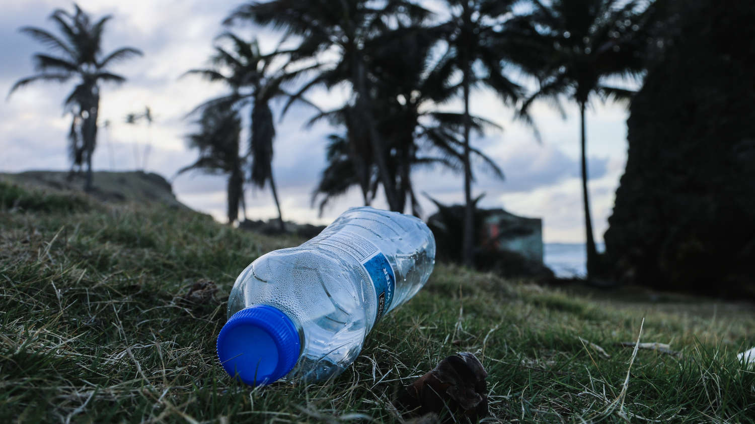 Why are plastic water bottles bad for the environment