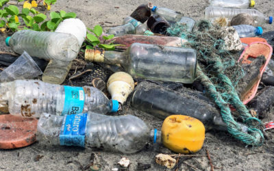 Plastic water bottle Pollution: Problems, Facts & Stats