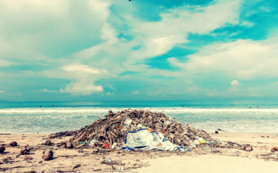 Ocean Pollution by Country: Who Are the Biggest Polluters?